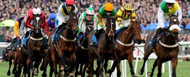 Cheltenham Gold Cup Race Day