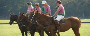 Cambridge Polo and Pimms
